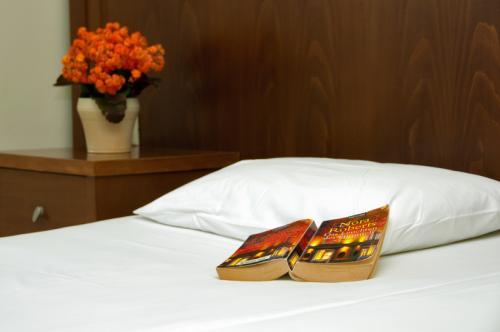 hotel-elina-karavostasi027